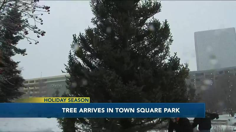 A sign of the season. The Downtown holiday tree is here