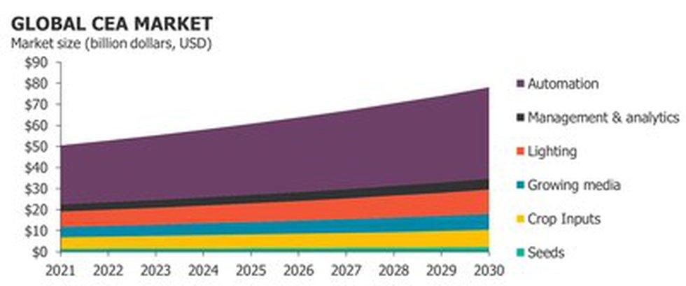 Predicted global CEA market between now and 2030