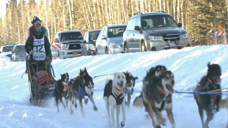 Marla Brodsky, rookie musher from Massachusetts, takes off from the Pleasant Valley start line...