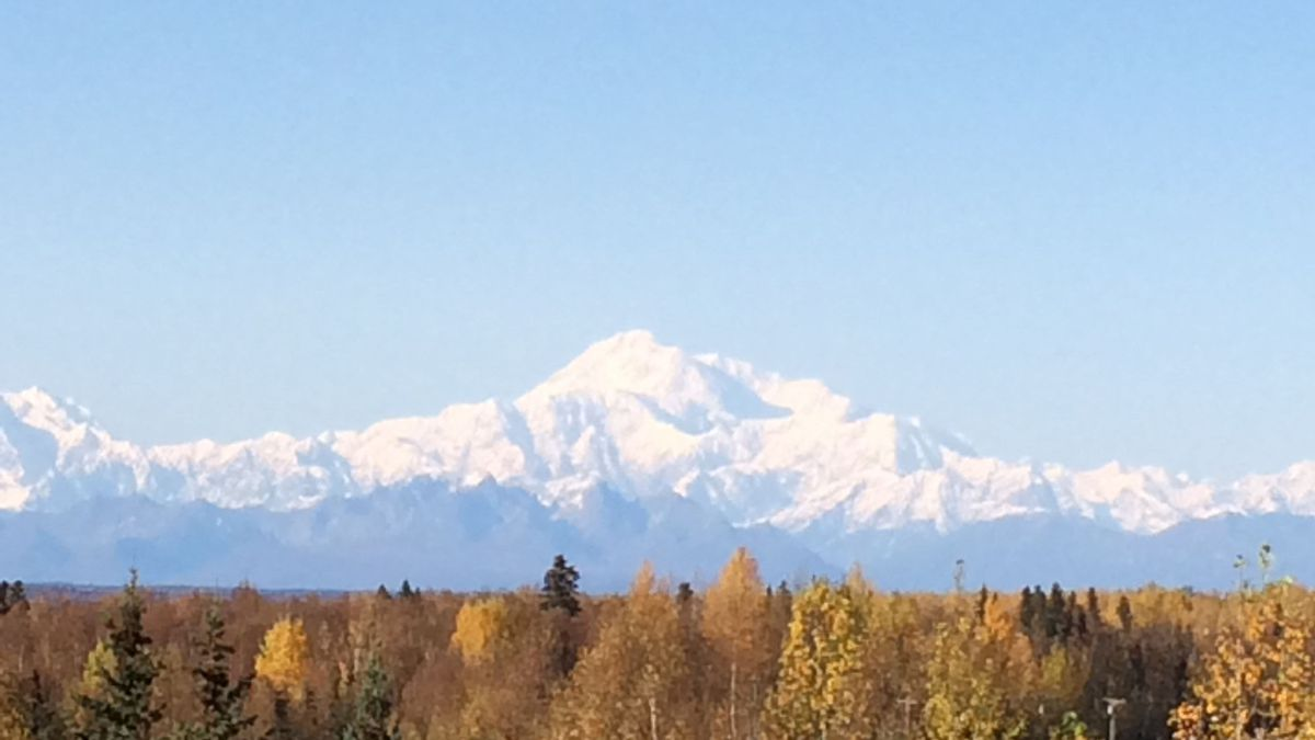 Denali: The great one! / Photo courtesy by Michelle Mullins