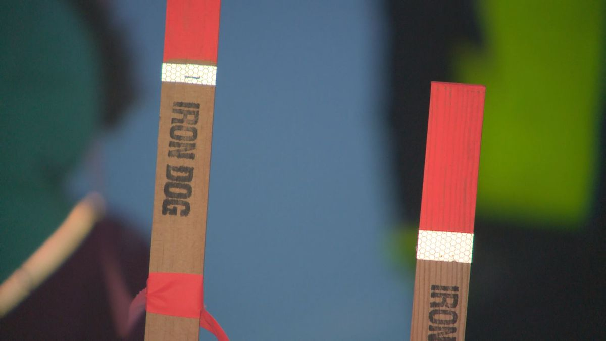 Trail markers on the Iron Dog trail at McGrath. (KTUU)