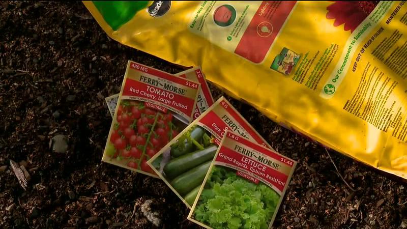 Get your garden going in pre-spring.