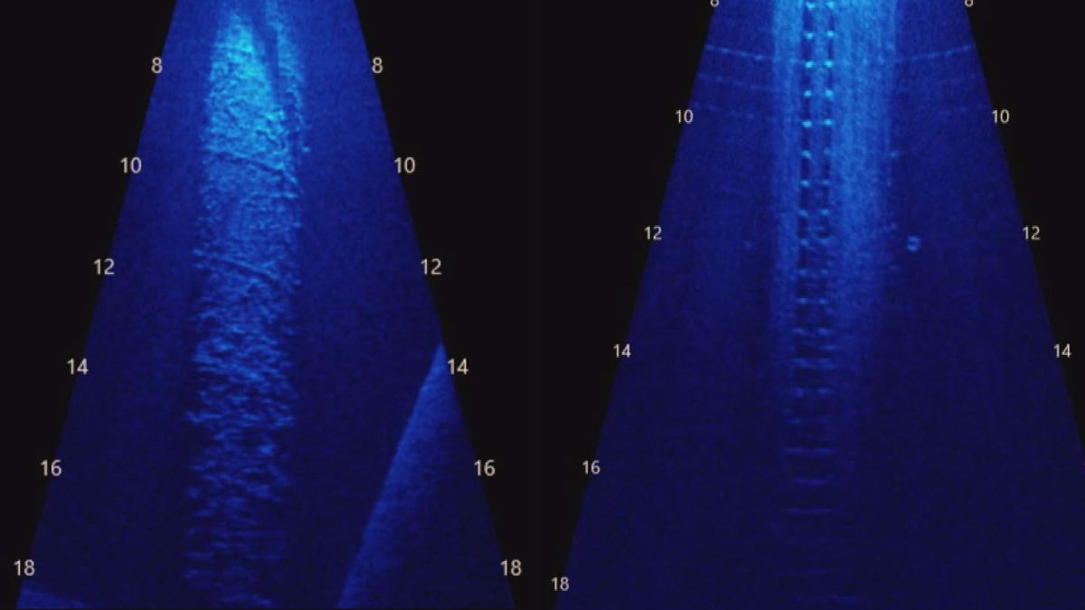 Recent sonar scans show corrosion on underwater pilings, both with (Right) and without (Left)...