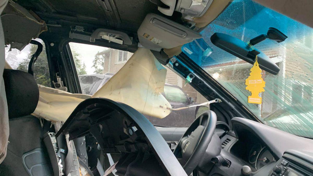 Bear destroys pizza drivers vehicle