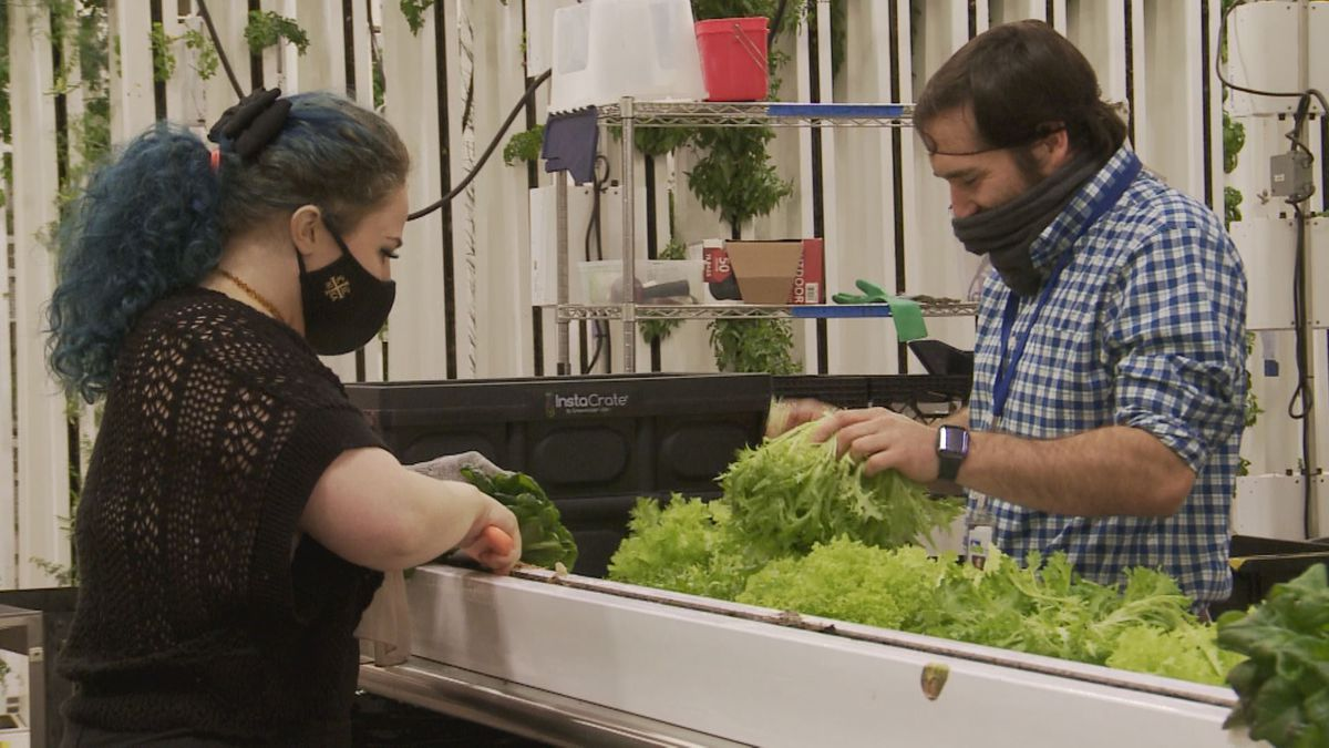 At Alaska Seeds of Change, many youth have pushed through the hurdles of the pandemic and continued to grow right alongside the plants they tend to.