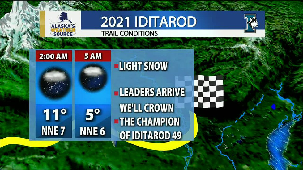 Temperatures will be in the single digits as the champion of Iditarod 49 is crowned.
