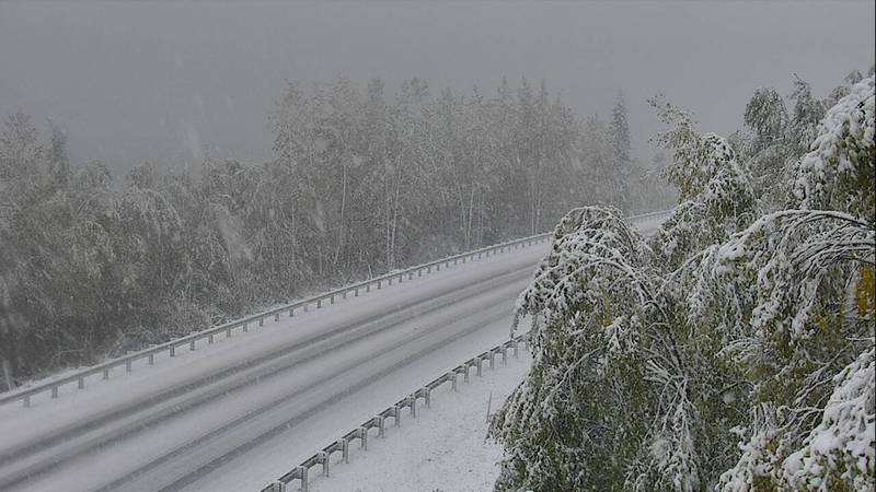 Conditions along the Seward highway near Summit Lake as of 4 p.m. Thursday.