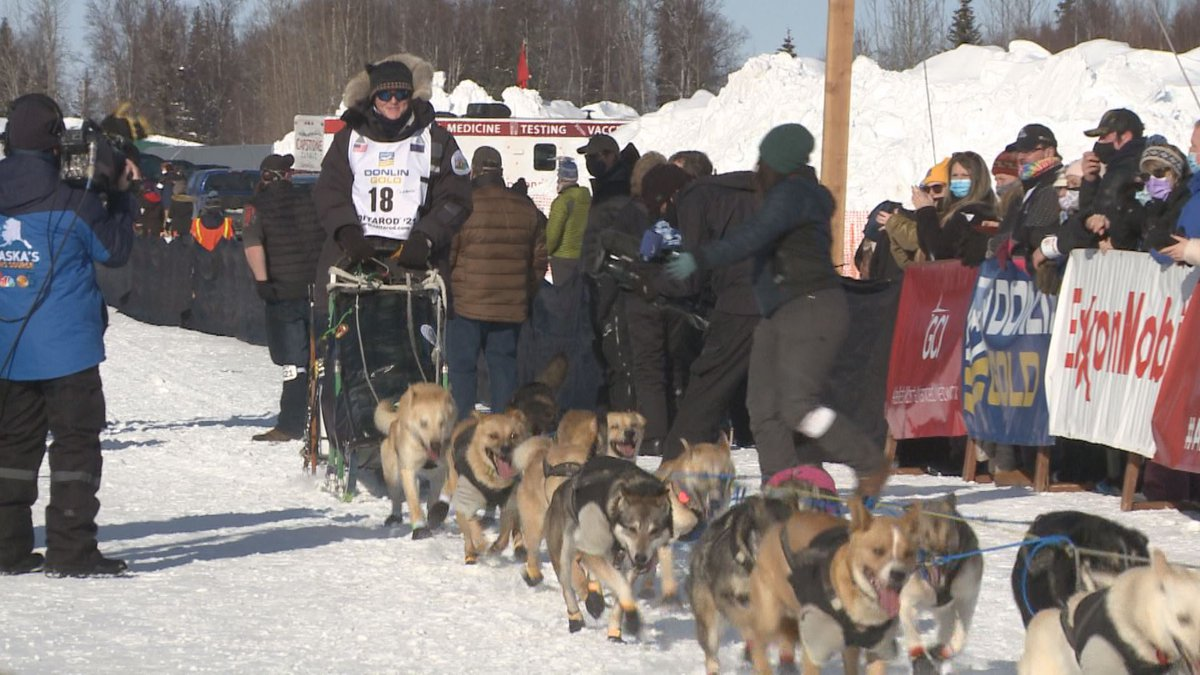 Iditarod musher Chad Stoddard and his dog team at the start of the 2021 race.