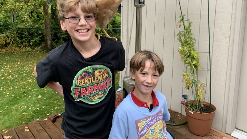 """Eight-year-old Thomas Bouton and his 11-year-old brother Benjamin do a weekly """"Tomato Report""""..."""