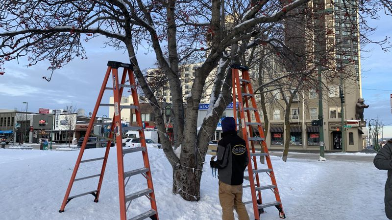 Volunteers put up holiday lights downtown.