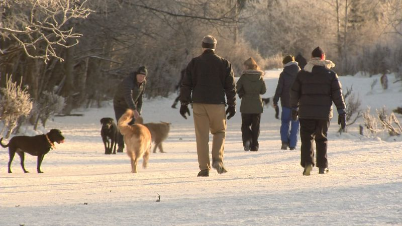 Anchorage considers changes to leash laws.