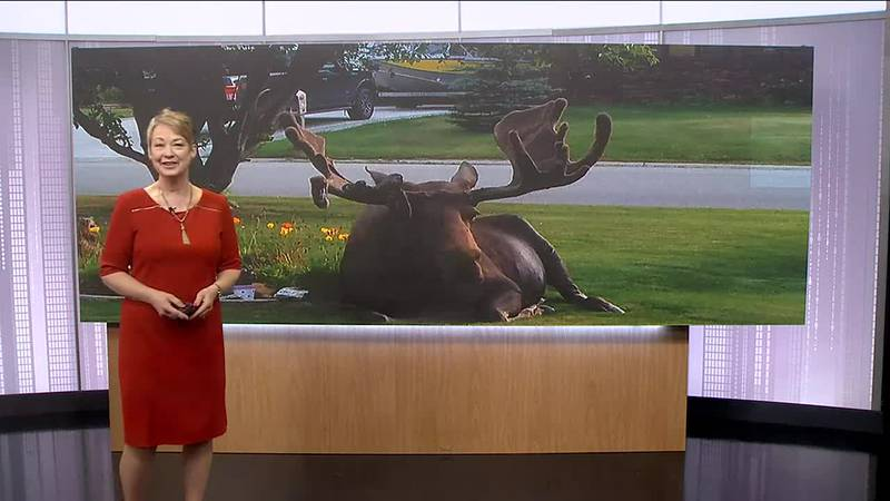 Weather report with Jackie Purcell.