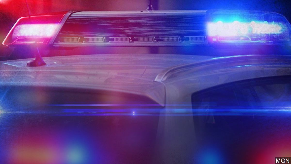 The Bell County Sheriff's Department was dispatched to an address in the 2900 block of Mimosa...