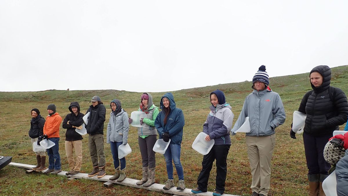 Eight undergraduate students traveled from the lower 48 to conduct research for two months this summer at the University of Alaska Fairbanks. The focus of the program at UAF is on understanding the Arctic as a system. (Sara Tewksbury/KTVF)