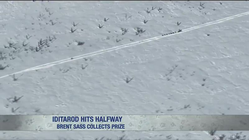 Brent Sass leads, Dallas Seavey is charging and much of the field follows on the way to Iditarod.