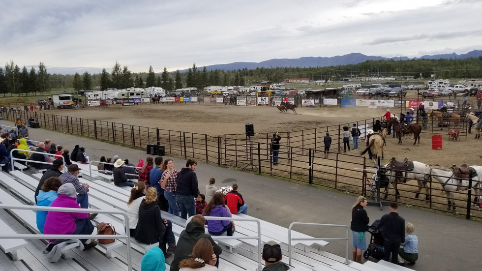 Judge has close call with Bull at Rodeo Alaska.