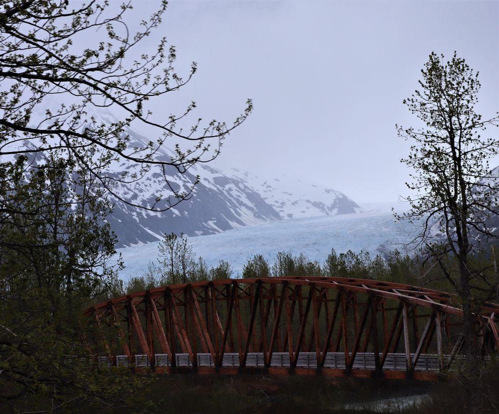 Roadtrippin': Riding the Alaska Railroad to the Alaska SeaLife Center