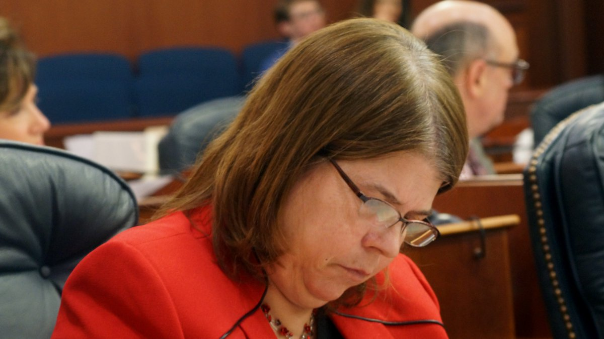 Rep. Tammie Wilson, R-North Pole, reviews a document during a House floor session in 2016.