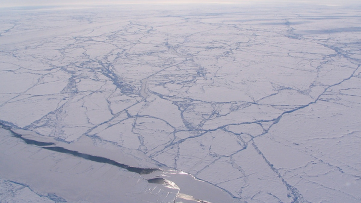Sun glint off a sea ice lead in an otherwise heavily ridged ice pack, Canada Basin (Arctic...