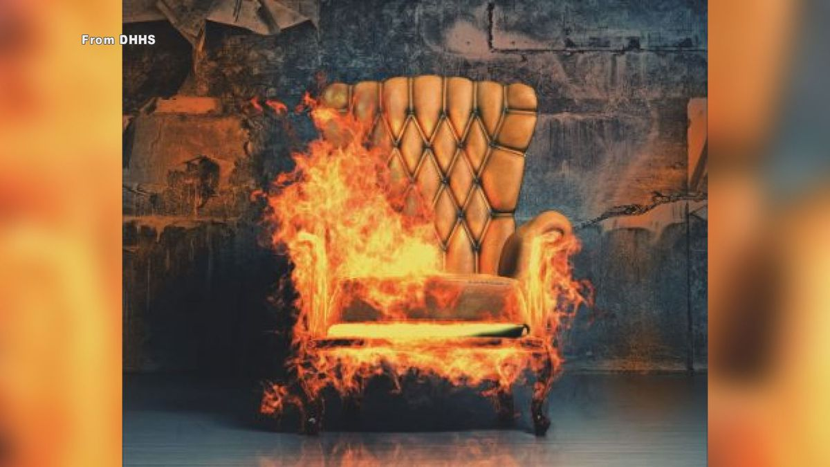Many flame retardant chemicals have been used in furniture to delay ignition time, but studies show they are ineffective and actually cause adverse health effects when ignited.