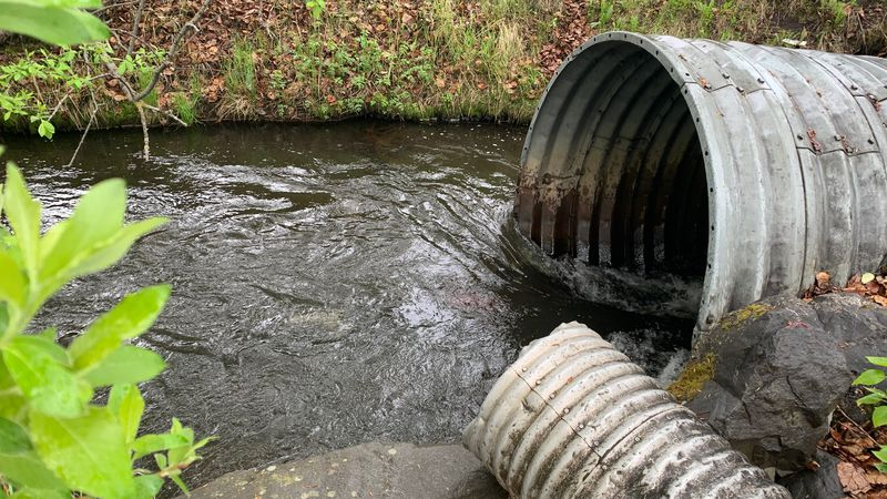 Water samples from local creeks, like Chester Creek shown here, are being taken to look for a...