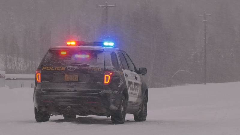 Fairbanks police vehicle (File photo)