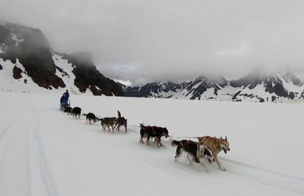 Roadtrippin': For Iditarod veterans Beals and Stokey, summertime tour business is turning heads