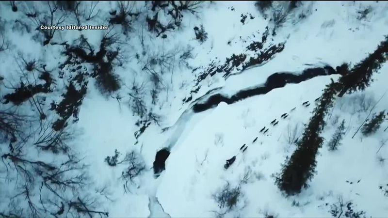 An overhead shot of the trail, courtesy of Iditarod Insider.