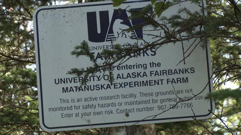 UAF explores gravel resources along Matanuska Greenbelt trails in Palmer.