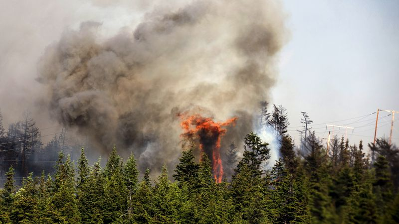 In this June 17, 2015 photo from the Alaska Army National Guard, trees erupt in flames in the...