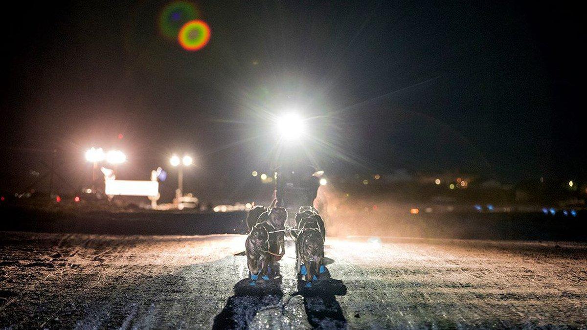 The 2018 Kuskokwim 300 sled dog race. (Courtesy Greg Lincoln)
