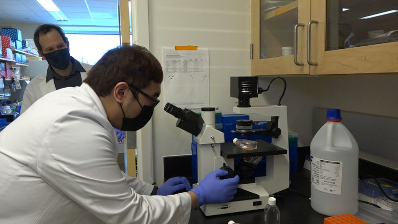 Dr. Eric Bortz overlooking graduate student, Ralph Dagdag as they do research on the coronavirus.
