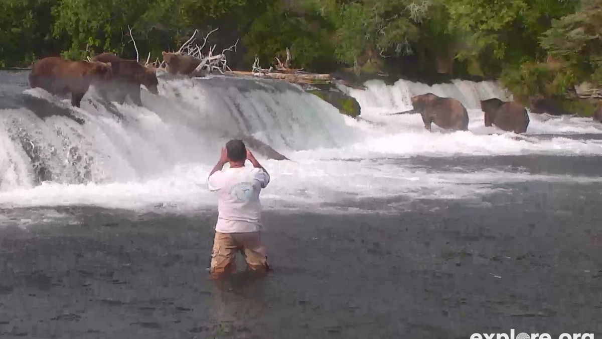 David Engleman is seen in this still image from a live camera of Brooks Falls photographing...