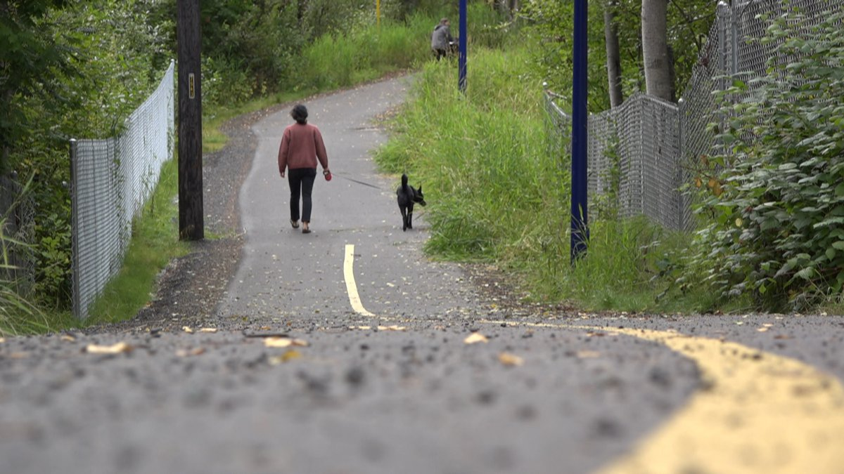 An Anchorage woman taking her dog for a walk along the Fish Creek Trail in Spenard.