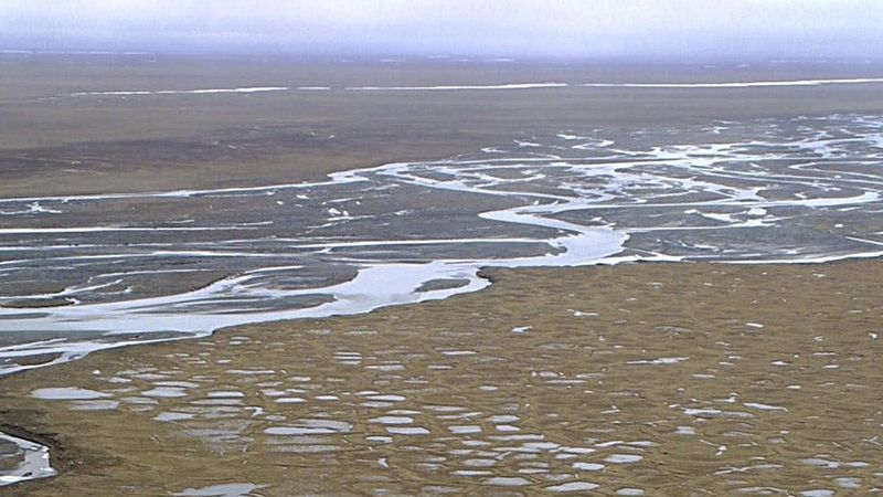 Pools of water in Arctic National Wildlife Refuge's coastal plain, Alaska (Photo from AP...
