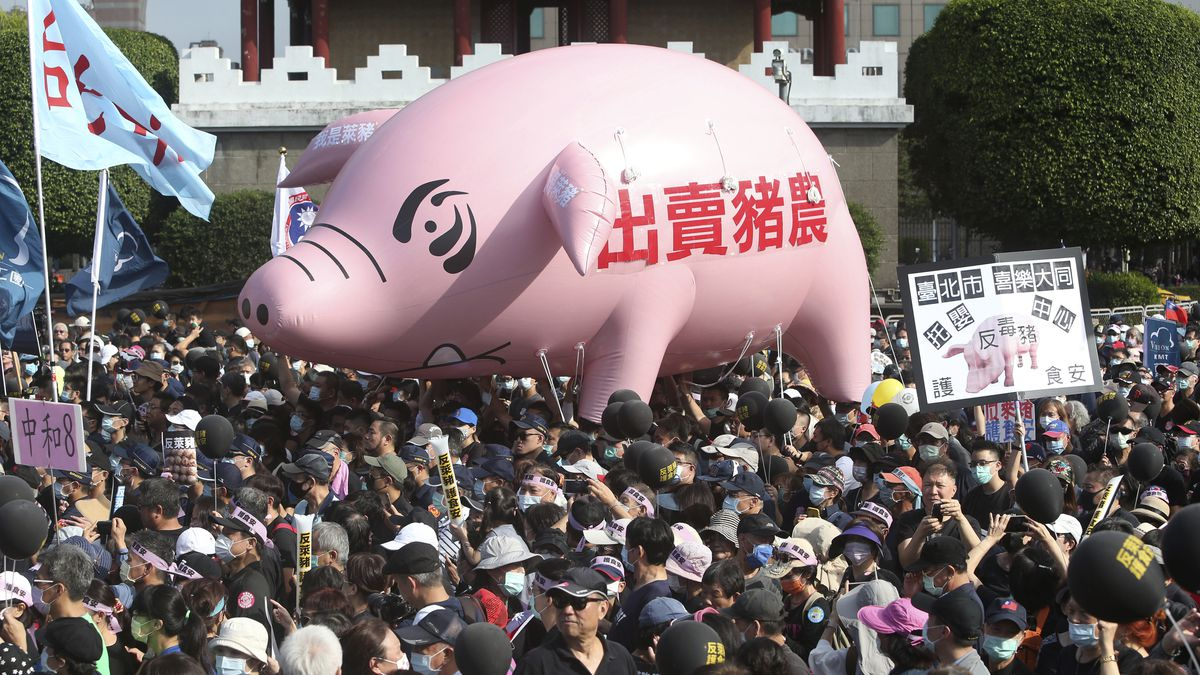 "People hold a pig model with the slogan ""Betraying pig farmers"" during a protest in Taipei,..."