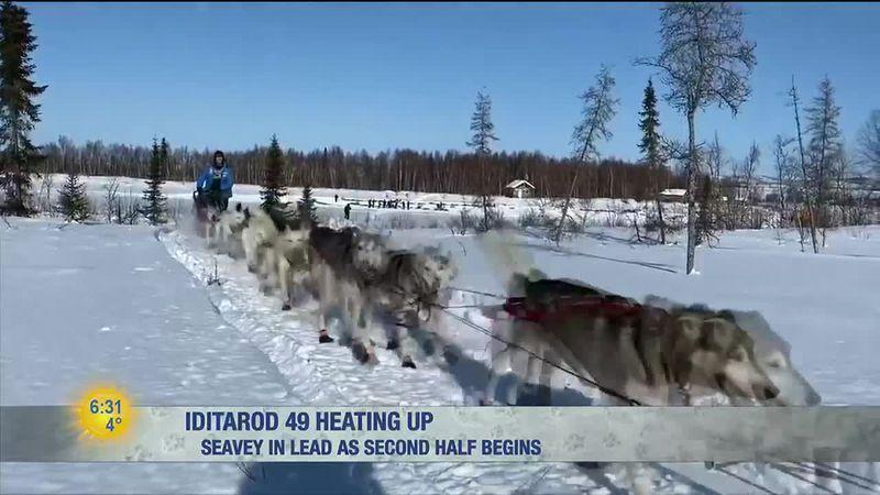 Iditarod 2021: Trail Tracker, Friday AM