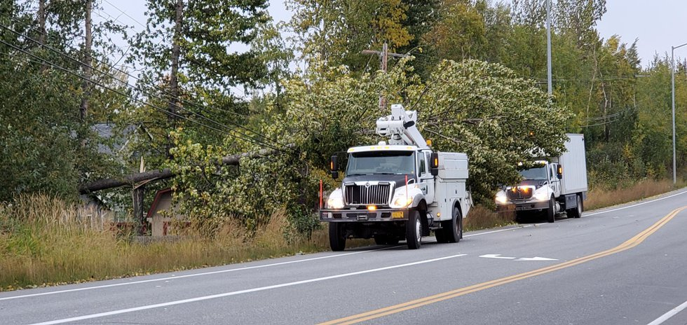 Multiple Anchorage residents are without power, including those affected by a fallen tree on a...