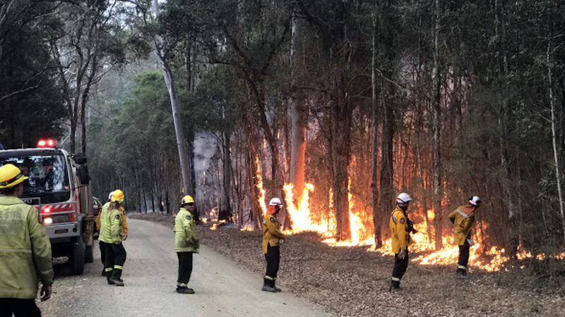A strike team of firefighters from New Zealand conduct a burn operation on a fire in New South...
