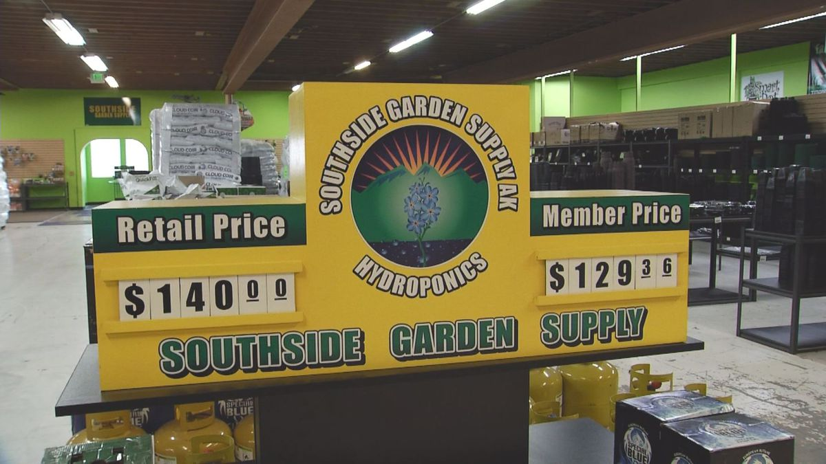 An Anchorage garden supply store says business is up during COVID-19, particularly from people...