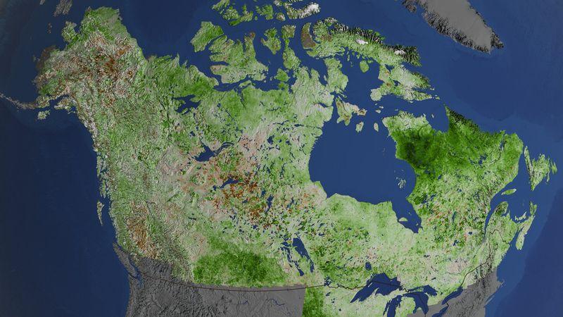Map created using Landsat data
