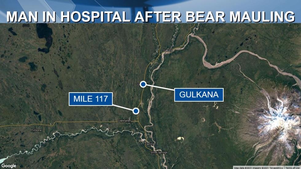 A Chitina man was seriously injured by a bear mauling near the Gulkana area on Tuesday.