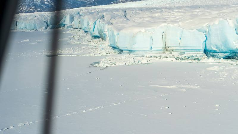 Here is a picture of Knik Glacier taken from a plane on 3-27-2021