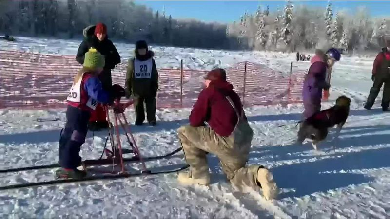 Kids' sled dog races in Willow