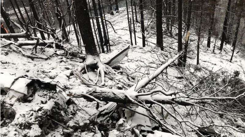 Broken trees at the site of Alaska plane crash (Image from NTSB Preliminary Accident Report)