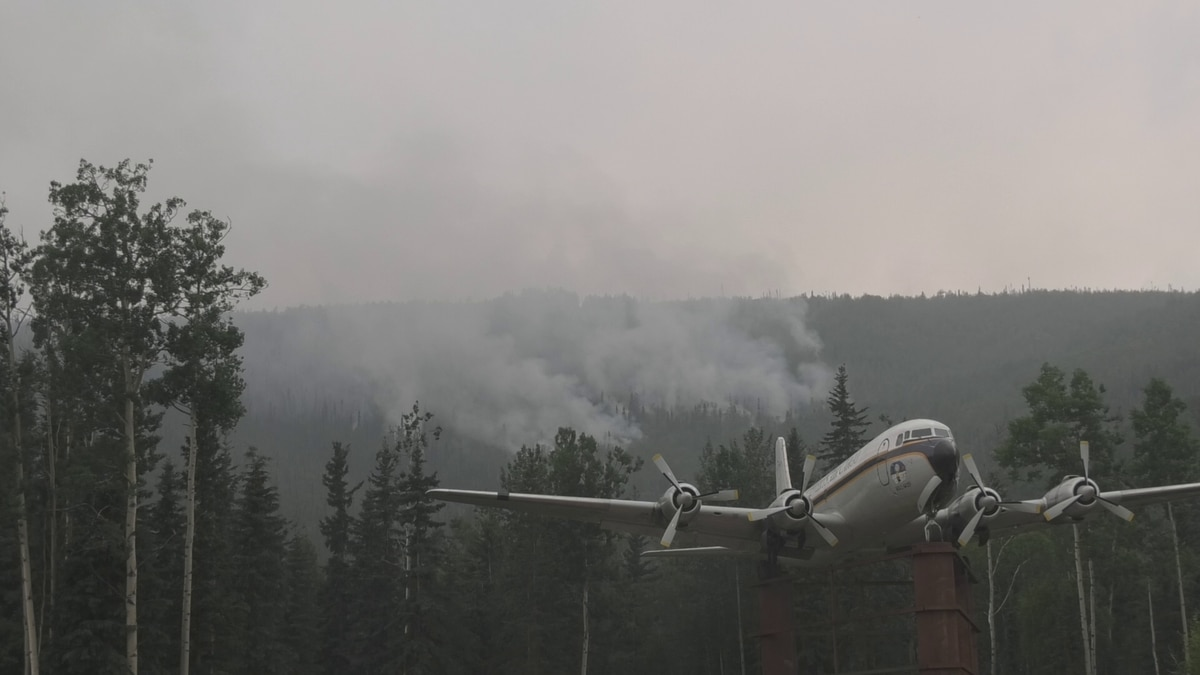 The Fairbanks Department of Fish and Game explains how wildfires impact wildlife for better and...