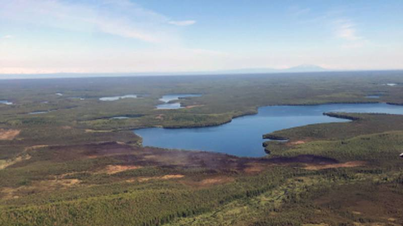 The site of the Loon Lake fire, seen here Monday, June 14, 2021, shows little smoke rising from...