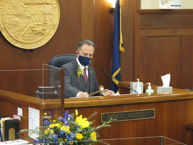 Sen. Peter Micciche, R-Soldotna, was chosen to be Senate president.