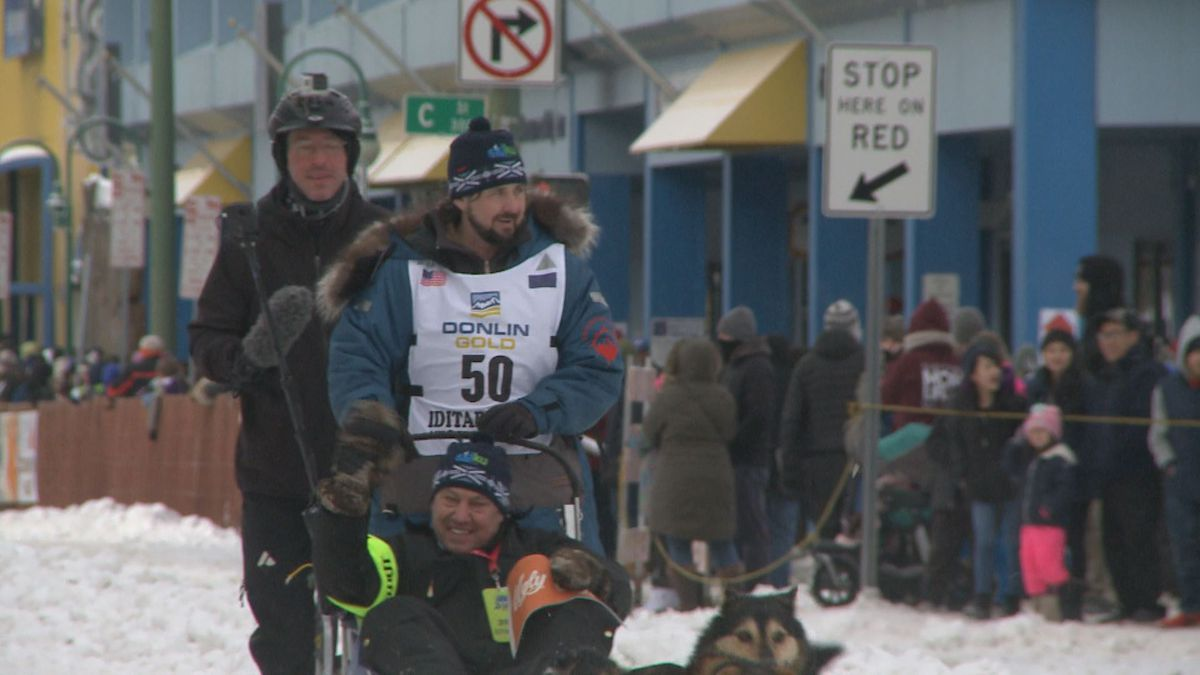 Quince Mountain, musher #50, as he moves down 4th Avenue at the Ceremonial Start of the 2020...