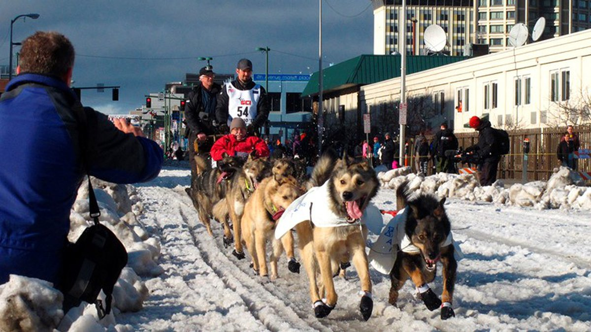 In this March 7, 2015, file photo, musher Peter Kaiser, of Bethel, Alaska, leads his team past...